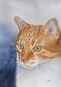 Morgan the Cat      (SOLD)